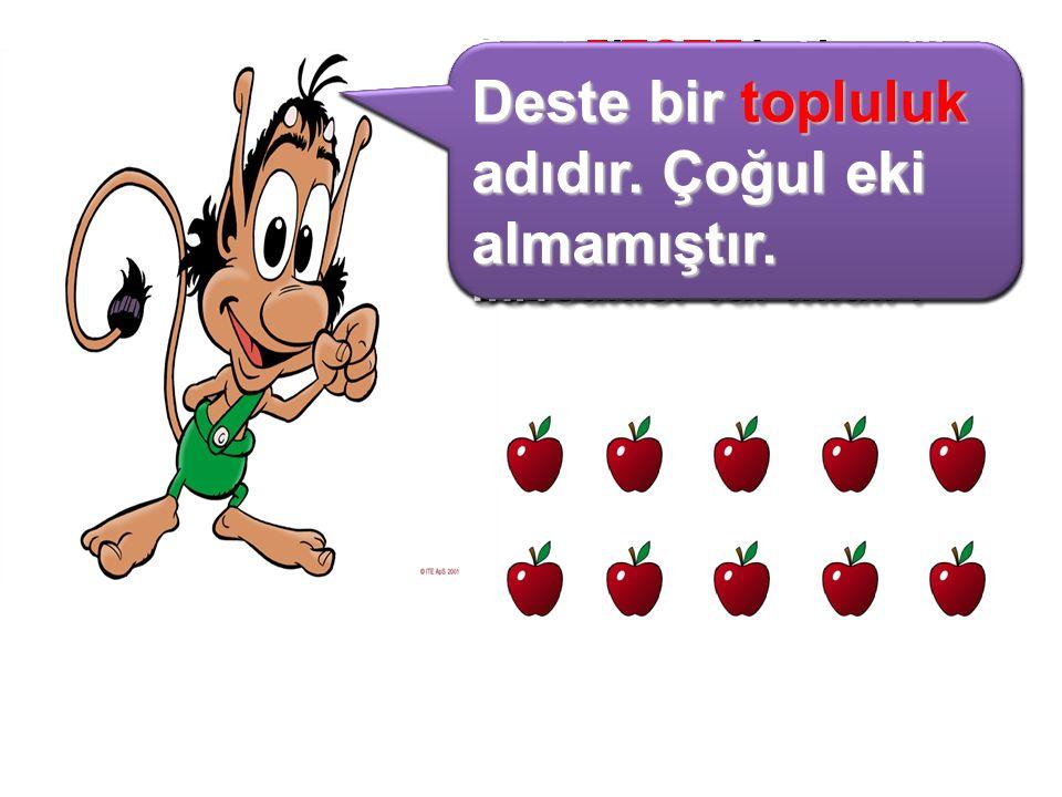 Sevgili arkadaşlar çoğul eki almadığı hâlde birden çok varlığı anlatan sözcükler var mıdır? Birlikte aşağıdaki elmaları sayalım. Kaç tane olduğunu söy