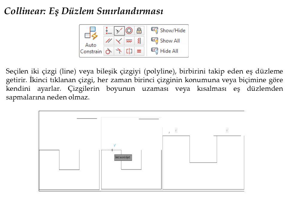 Concentric: Eş Merkez Sınırlandırması Bu geometrik sınırlandırma ile seçilen iki daire veya yay nesnesi aynı merkezde konumlandırılır.