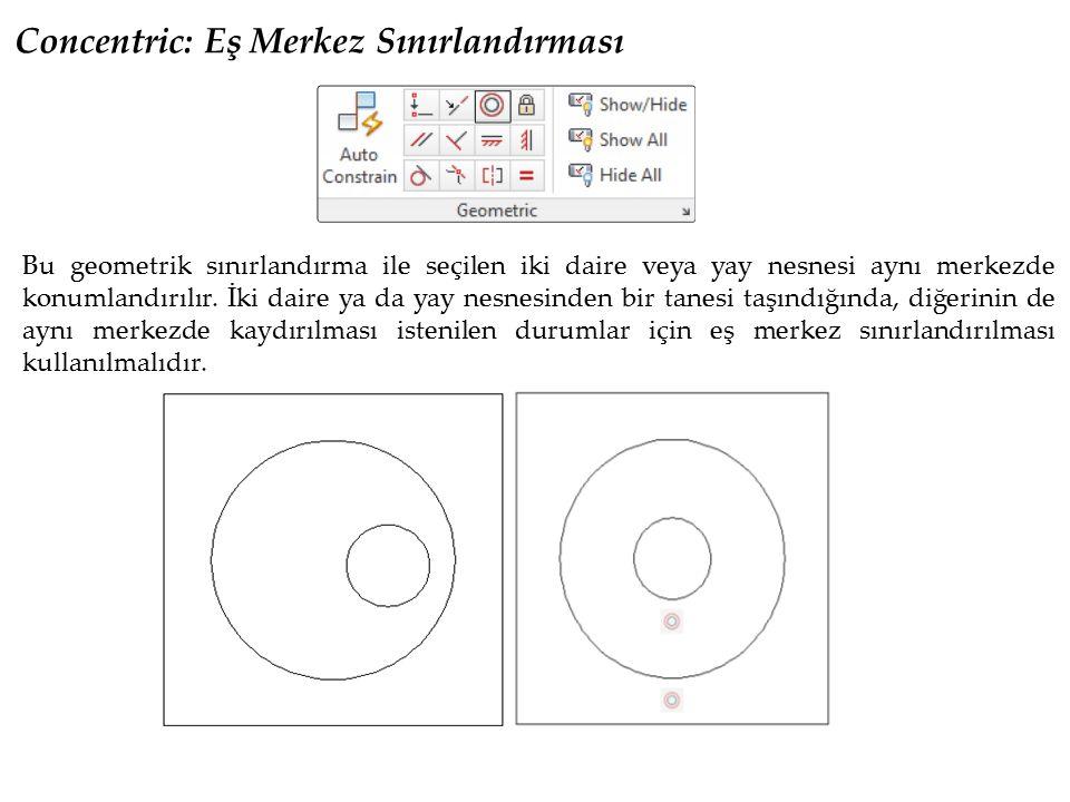 Concentric: Eş Merkez Sınırlandırması Bu geometrik sınırlandırma ile seçilen iki daire veya yay nesnesi aynı merkezde konumlandırılır. İki daire ya da