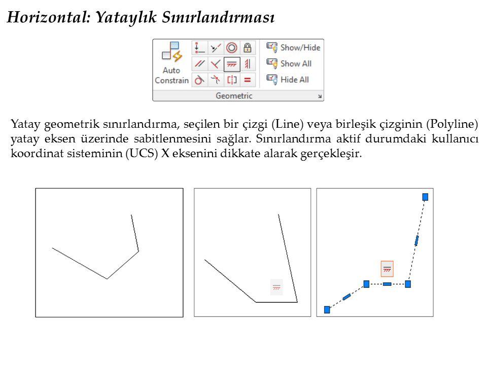 Vertical: Dikeylik Sınırlandırması Dikey geometrik sınırlandırma, seçilen bir çizgi (line) veya birleşik çizginin (Polyline), dikey eksen üzerinde sabitlenmesini sağlar.