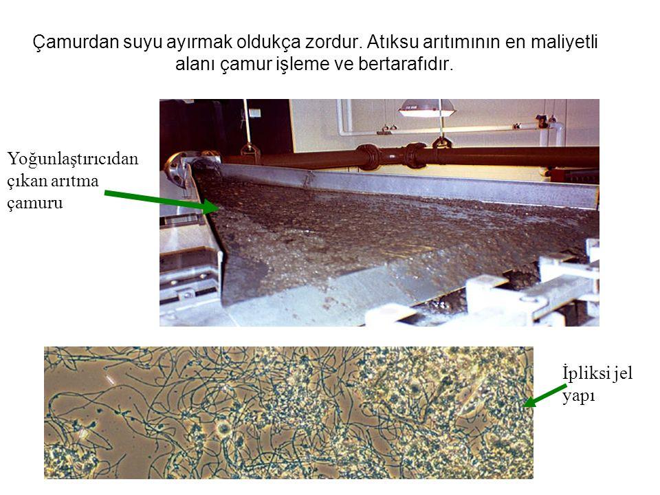 Çamurdan suyu ayırmak oldukça zordur. Atıksu arıtımının en maliyetli alanı çamur işleme ve bertarafıdır. Yoğunlaştırıcıdan çıkan arıtma çamuru İpliksi
