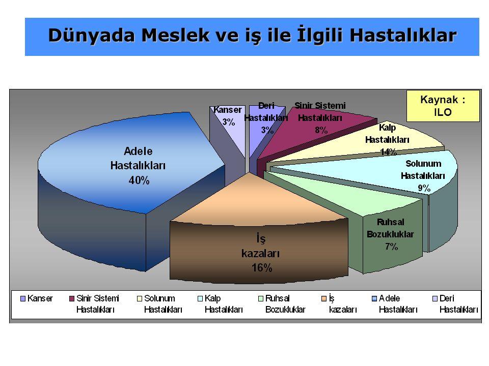 Kaynak : ILO Dünyada Meslek ve iş ile İlgili Hastalıklar