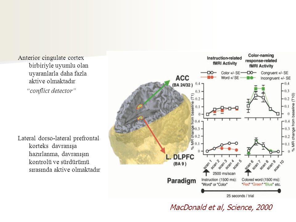 Anterior cingulate cortex birbiriyle uyumlu olan uyaranlarla daha fazla aktive olmaktadır conflict detector Lateral dorso-lateral prefrontal korteks davranışa hazırlanma, davranışın kontrolü ve sürdürümü sırasında aktive olmaktadır MacDonald et al, Science, 2000