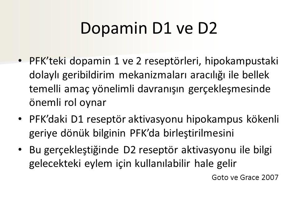 Dopamin D1 ve D2 PFK'teki dopamin 1 ve 2 reseptörleri, hipokampustaki dolaylı geribildirim mekanizmaları aracılığı ile bellek temelli amaç yönelimli davranışın gerçekleşmesinde önemli rol oynar PFK'daki D1 reseptör aktivasyonu hipokampus kökenli geriye dönük bilginin PFK'da birleştirilmesini Bu gerçekleştiğinde D2 reseptör aktivasyonu ile bilgi gelecekteki eylem için kullanılabilir hale gelir Goto ve Grace 2007