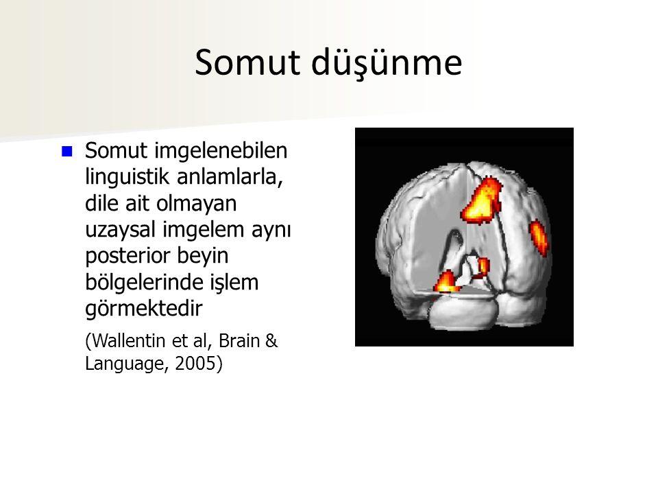 Somut imgelenebilen linguistik anlamlarla, dile ait olmayan uzaysal imgelem aynı posterior beyin bölgelerinde işlem görmektedir (Wallentin et al, Brain & Language, 2005) Somut düşünme