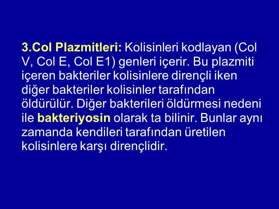 3.Col Plazmitleri: Kolisinleri kodlayan (Col V, Col E, Col E1) genleri içerir. Bu plazmiti içeren bakteriler kolisinlere dirençli iken diğer bakterile
