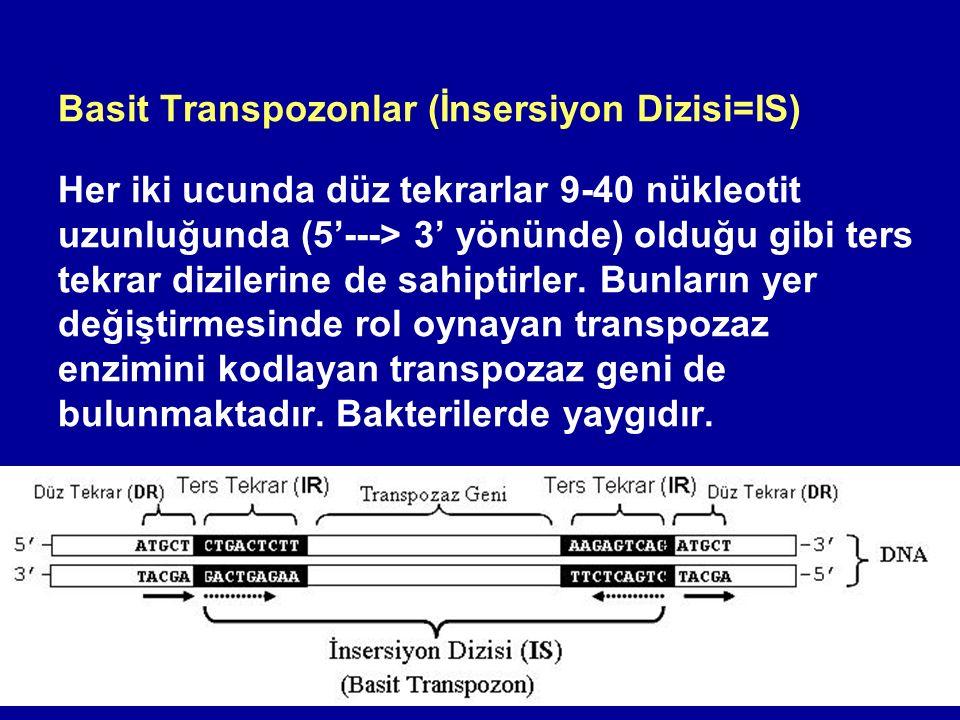 Basit Transpozonlar (İnsersiyon Dizisi=IS) Her iki ucunda düz tekrarlar 9-40 nükleotit uzunluğunda (5'---> 3' yönünde) olduğu gibi ters tekrar diziler