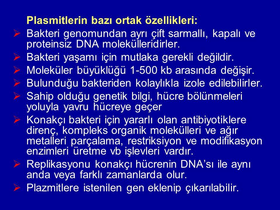 Plasmitlerin bazı ortak özellikleri:  Bakteri genomundan ayrı çift sarmallı, kapalı ve proteinsiz DNA molekülleridirler.  Bakteri yaşamı için mutlak