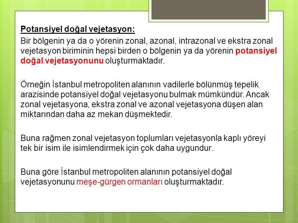 Potansiyel doğal vejetasyon: Bir bölgenin ya da o yörenin zonal, azonal, intrazonal ve ekstra zonal vejetasyon biriminin hepsi birden o bölgenin ya da