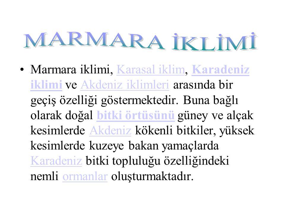 Marmara iklimi, Karasal iklim, Karadeniz iklimi ve Akdeniz iklimleri arasında bir geçiş özelliği göstermektedir.
