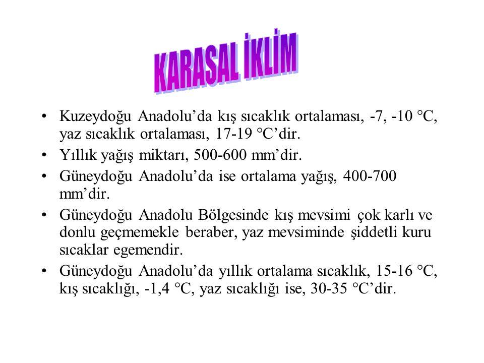 Kuzeydoğu Anadolu'da kış sıcaklık ortalaması, -7, -10 °C, yaz sıcaklık ortalaması, 17-19 °C'dir.