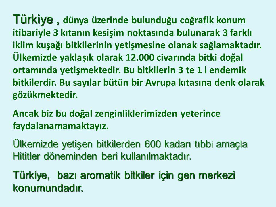 Türkiye, Türkiye, dünya üzerinde bulunduğu coğrafik konum itibariyle 3 kıtanın kesişim noktasında bulunarak 3 farklı iklim kuşağı bitkilerinin yetişmesine olanak sağlamaktadır.