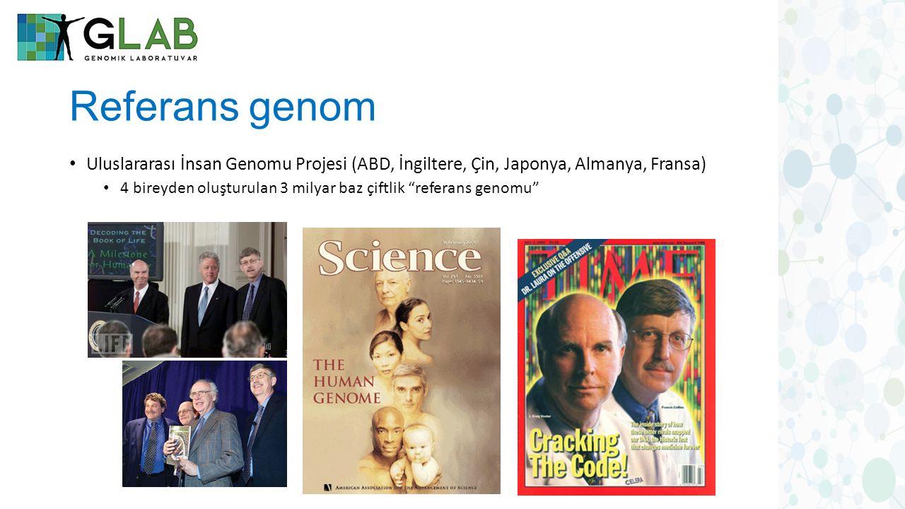 Referans genom Uluslararası İnsan Genomu Projesi (ABD, İngiltere, Çin, Japonya, Almanya, Fransa) 4 bireyden oluşturulan 3 milyar baz çiftlik referans genomu