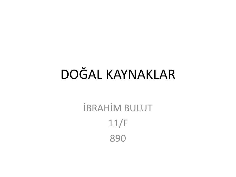 DOĞAL KAYNAKLAR İBRAHİM BULUT 11/F 890