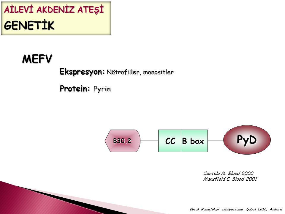 MEFV Ekspresyon: Nötrofiller, monositler Protein: Pyrin Centola M. Blood 2000 Mansfield E. Blood 2001 B30.2 CC B box CC B box PyD AİLEVİ AKDENİZ ATEŞİ