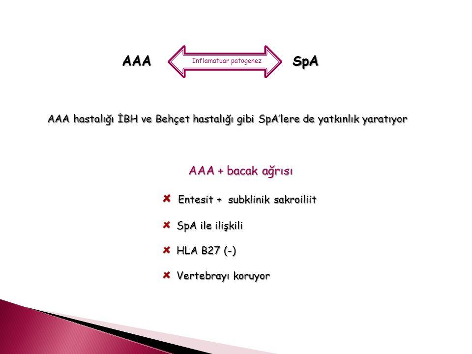 AAA İnflamatuar patogenez SpA AAA hastalığı İBH ve Behçet hastalığı gibi SpA'lere de yatkınlık yaratıyor AAA + bacak ağrısı Entesit + subklinik sakroi