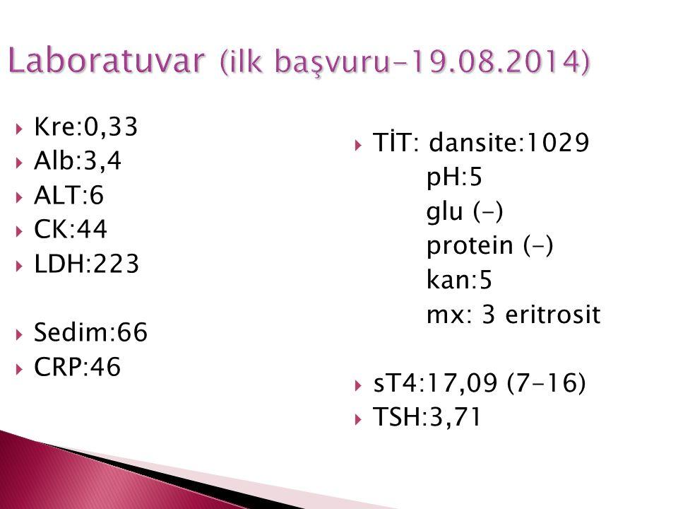 Laboratuvar (ilk başvuru-19.08.2014)  Kre:0,33  Alb:3,4  ALT:6  CK:44  LDH:223  Sedim:66  CRP:46  TİT: dansite:1029 pH:5 glu (-) protein (-) k