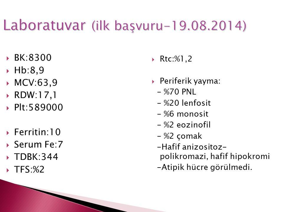 Laboratuvar (ilk başvuru-19.08.2014)  BK:8300  Hb:8,9  MCV:63,9  RDW:17,1  Plt:589000  Ferritin:10  Serum Fe:7  TDBK:344  TFS:%2  Rtc:%1,2 