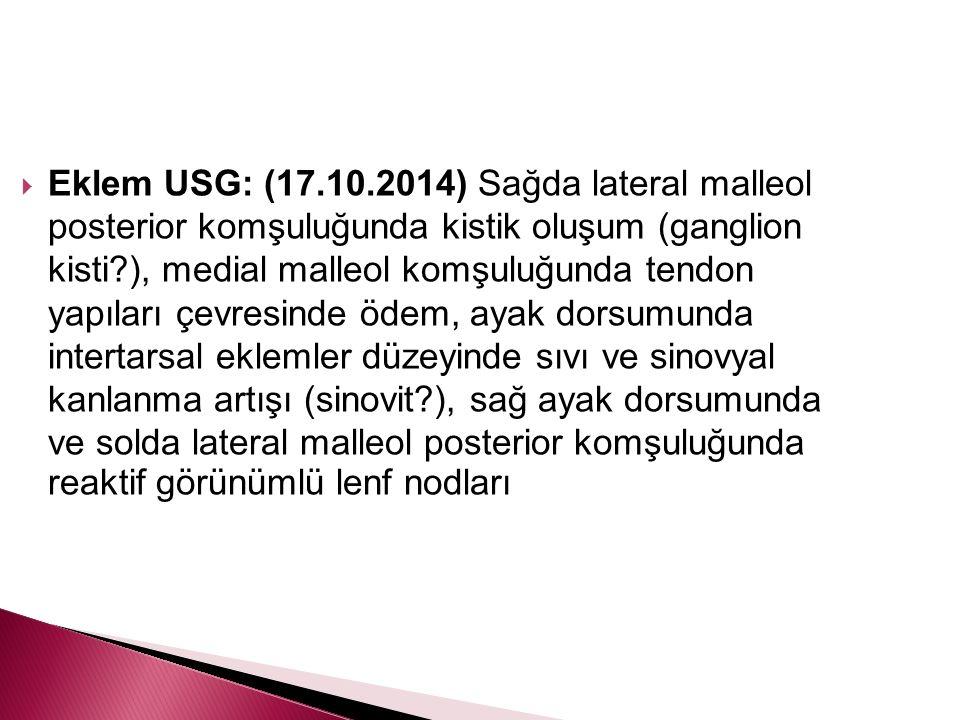  Eklem USG: (17.10.2014) Sağda lateral malleol posterior komşuluğunda kistik oluşum (ganglion kisti?), medial malleol komşuluğunda tendon yapıları çe