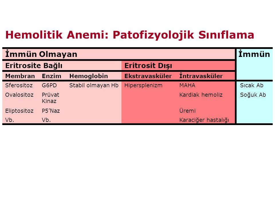 Hemolitik Anemi: Patofizyolojik Sınıflama İmmün Olmayanİmmün Eritrosite BağlıEritrosit Dışı MembranEnzimHemoglobinEkstravaskülerİntravasküler SferositozG6PDStabil olmayan HbHipersplenizmMAHA Sıcak Ab OvalositozPrüvat Kinaz Kardiak hemoliz Soğuk Ab EliptositozP5'NazÜremi Vb.