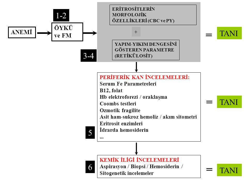 ANEMİ ERİTROSİTLERİN MORFOLOJİK ÖZELLİKLERİ (CBC ve PY) ÖYKÜ ve FM + YAPIM-YIKIM DENGESİNİ GÖSTEREN PARAMETRE (RETİKÜLOSİT) PERİFERİK KAN İNCELEMELERİ: Serum Fe Parametreleri B12, folat Hb elektroforezi / oraklaşma Coombs testleri Ozmotik fragilite Asit ham-sukroz hemoliz / akım sitometri Eritrosit enzimleri İdrarda hemosiderin...
