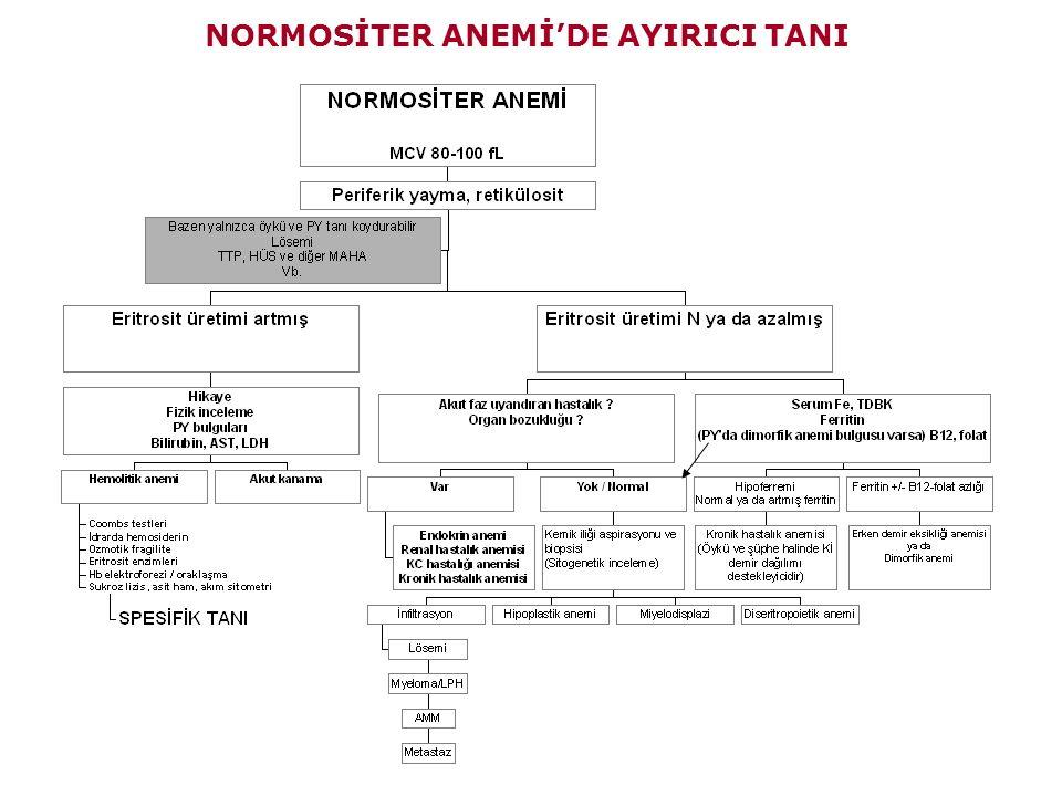 NORMOSİTER ANEMİ'DE AYIRICI TANI