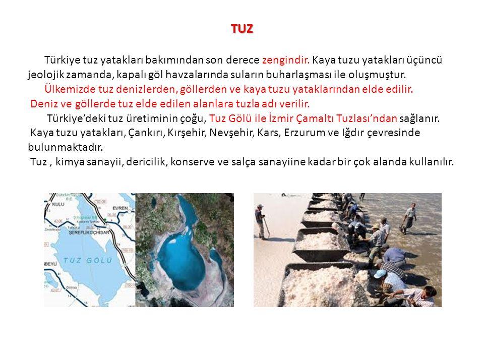 TUZ Türkiye tuz yatakları bakımından son derece zengindir. Kaya tuzu yatakları üçüncü jeolojik zamanda, kapalı göl havzalarında suların buharlaşması i