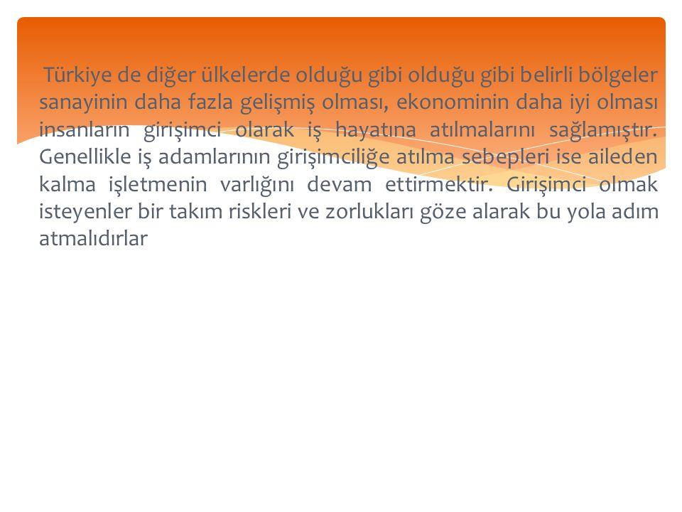 Türkiye de diğer ülkelerde olduğu gibi olduğu gibi belirli bölgeler sanayinin daha fazla gelişmiş olması, ekonominin daha iyi olması insanların girişimci olarak iş hayatına atılmalarını sağlamıştır.