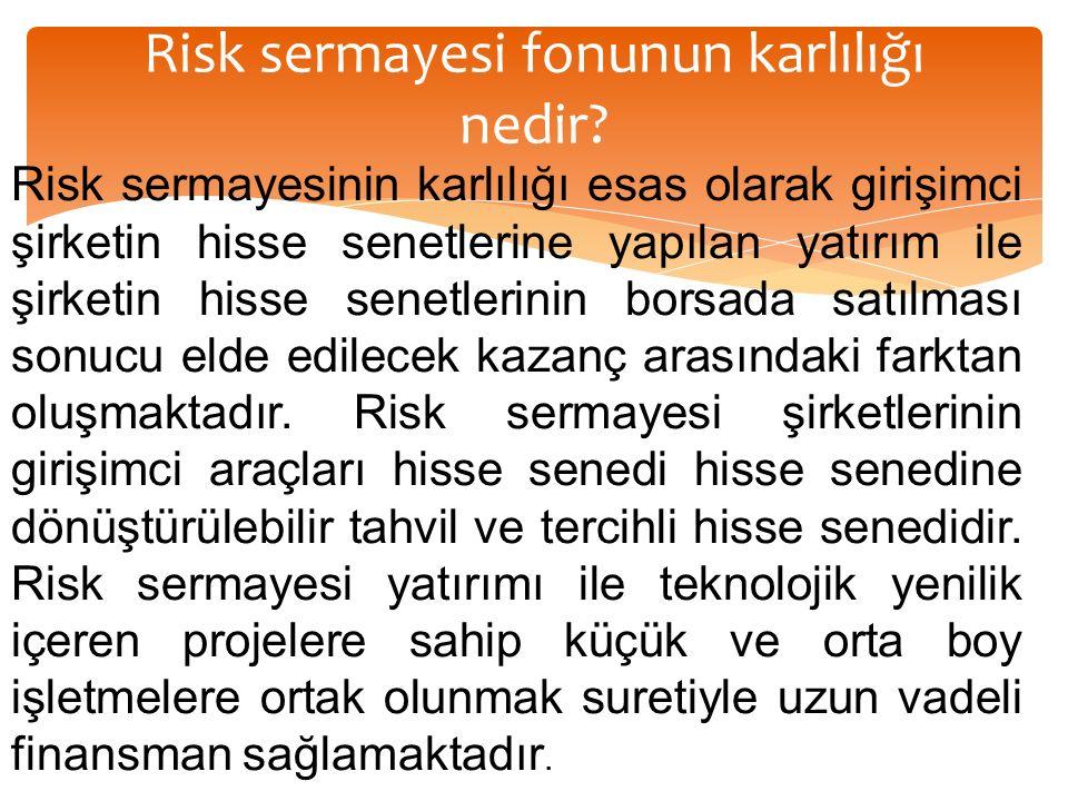 Risk sermayesi fonunun karlılığı nedir.