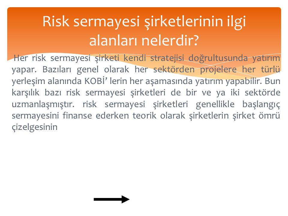 Risk sermayesi şirketlerinin ilgi alanları nelerdir.