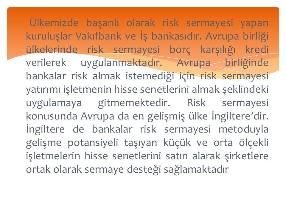 Ülkemizde başarılı olarak risk sermayesi yapan kuruluşlar Vakıfbank ve İş bankasıdır.