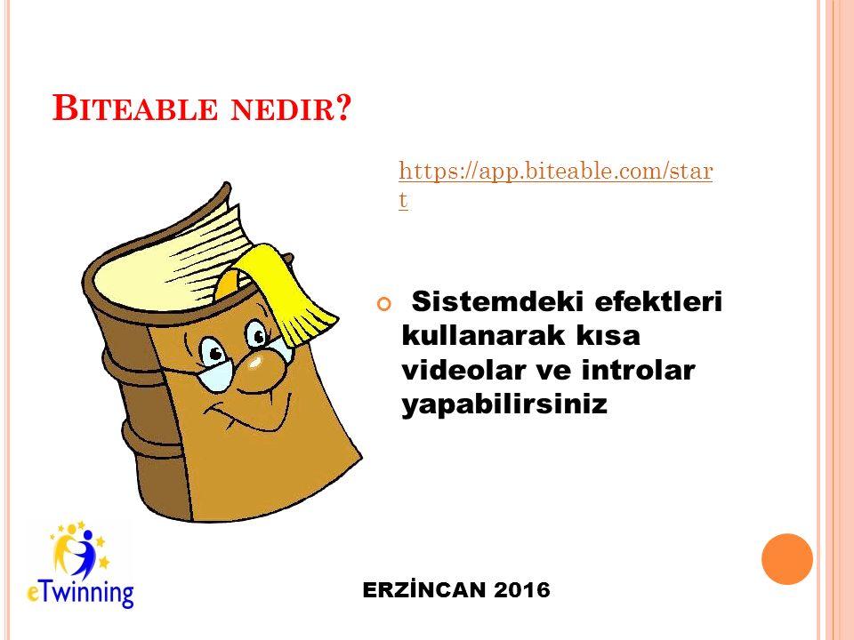 B ITEABLE NEDIR .