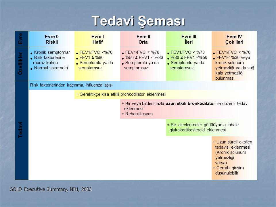 Evre Özellikler Tedavi Tedavi Şeması GOLD Executive Summary, NIH, 2003 Evre 0 Riskli Evre I Hafif Evre II Orta Evre III İleri Evre IV Çok Ileri Risk f
