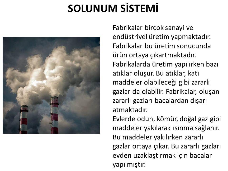 SOLUNUM SİSTEMİ Fabrikalar birçok sanayi ve endüstriyel üretim yapmaktadır.
