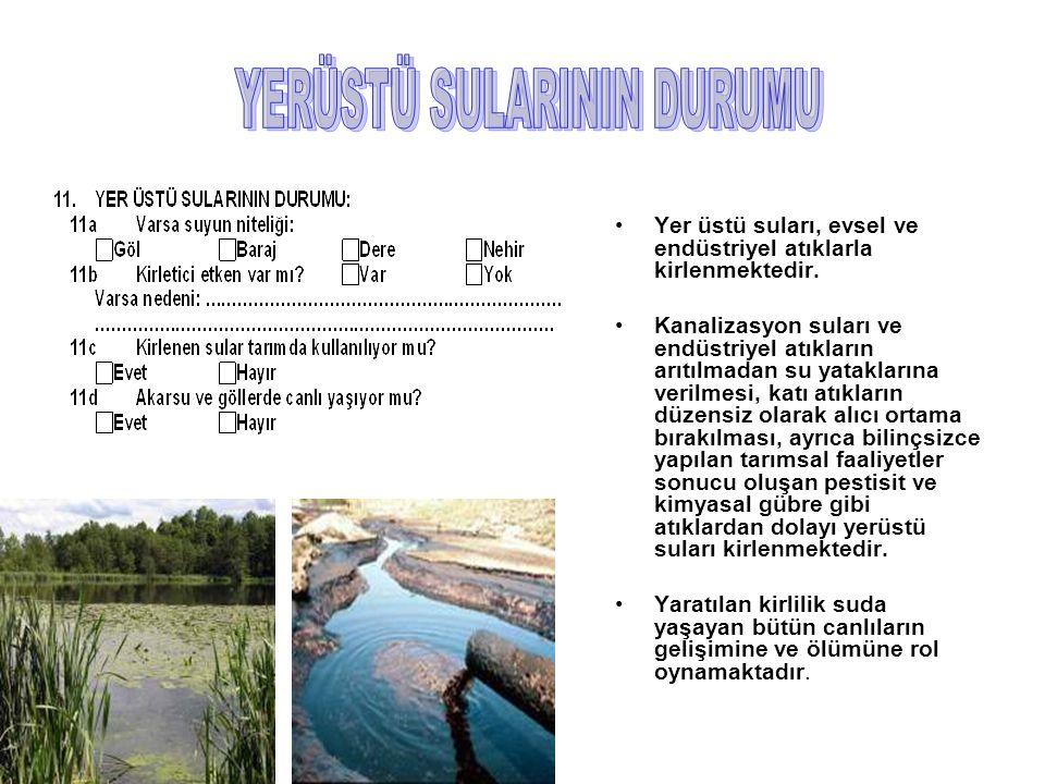 Yer üstü suları, evsel ve endüstriyel atıklarla kirlenmektedir.