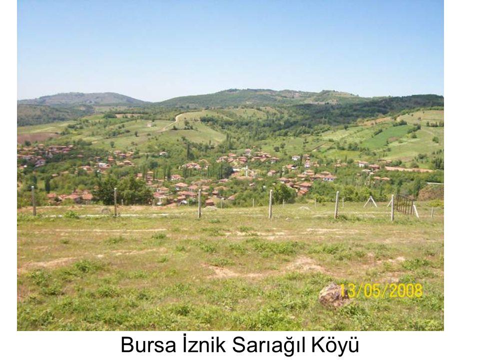 Bursa İznik Sarıağıl Köyü