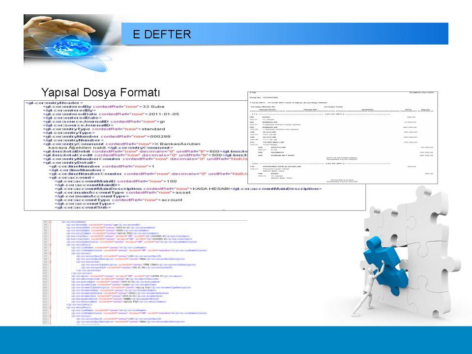 Yapısal Dosya Formatı E DEFTER