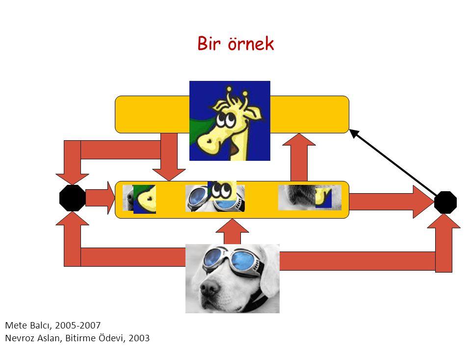 Bir örnek Mete Balcı, 2005-2007 Nevroz Aslan, Bitirme Ödevi, 2003