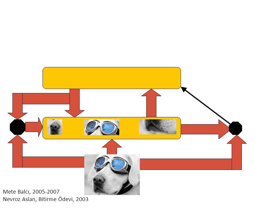 Mete Balcı, 2005-2007 Nevroz Aslan, Bitirme Ödevi, 2003