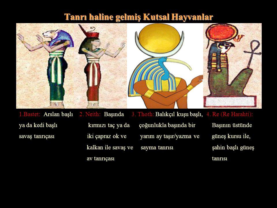 Tanrı haline gelmiş Kutsal Hayvanlar 1.Bastet: Arslan başlı 2. Neith: Başında 3. Thoth: Balıkçıl kuşu başlı, 4. Re (Re Harahti): ya da kedi başlı kırm