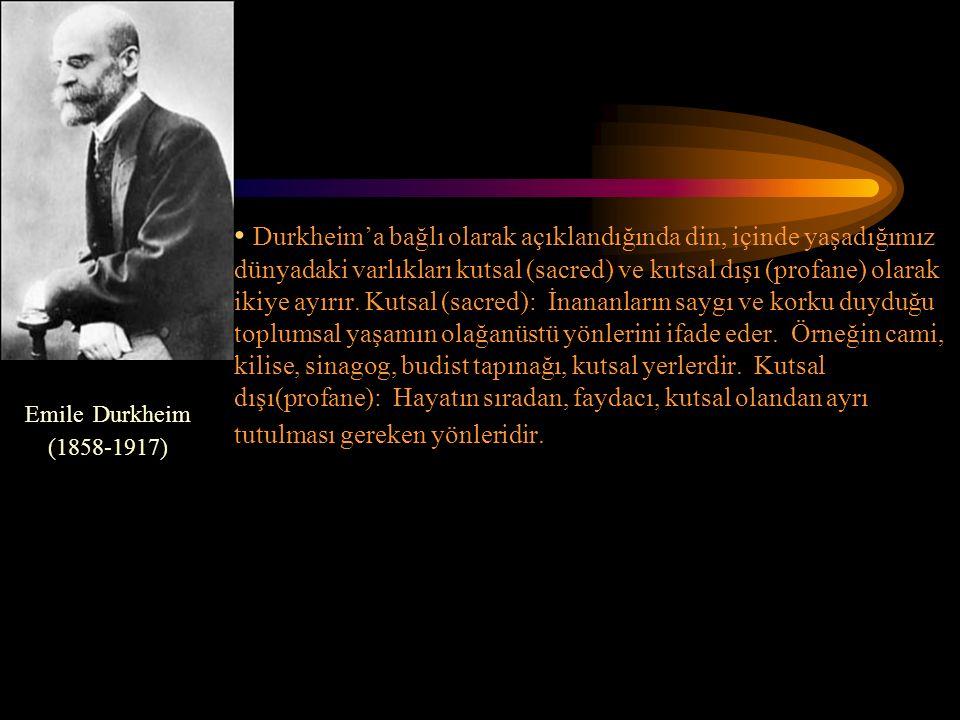Durkheim'a bağlı olarak açıklandığında din, içinde yaşadığımız dünyadaki varlıkları kutsal (sacred) ve kutsal dışı (profane) olarak ikiye ayırır.