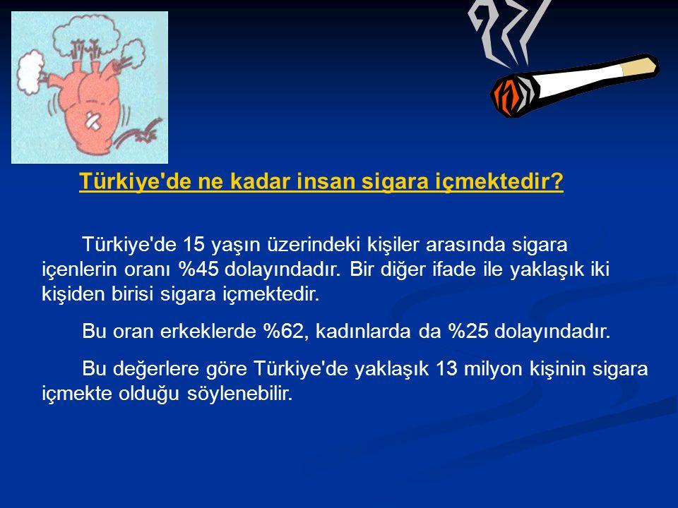 Türkiye de ne kadar insan sigara içmektedir.