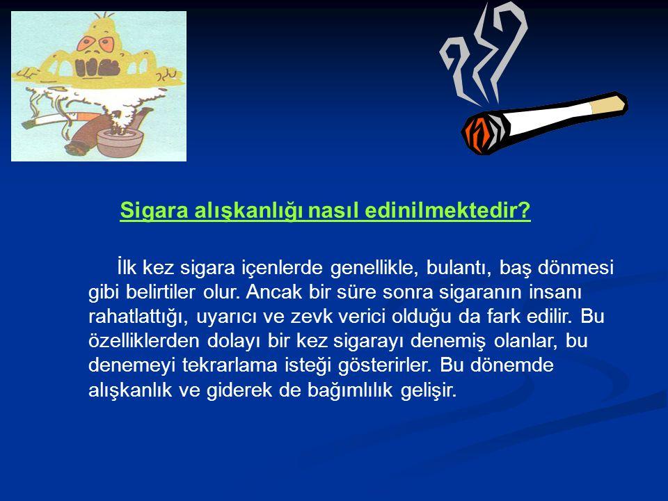 Sigara alışkanlığı nasıl edinilmektedir.