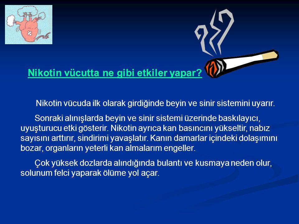 Nikotin vücutta ne gibi etkiler yapar.