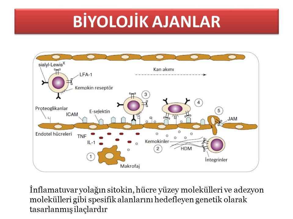İnflamatuvar yolağın sitokin, hücre yüzey molekülleri ve adezyon molekülleri gibi spesifik alanlarını hedefleyen genetik olarak tasarlanmış ilaçlardır BİYOLOJİK AJANLAR