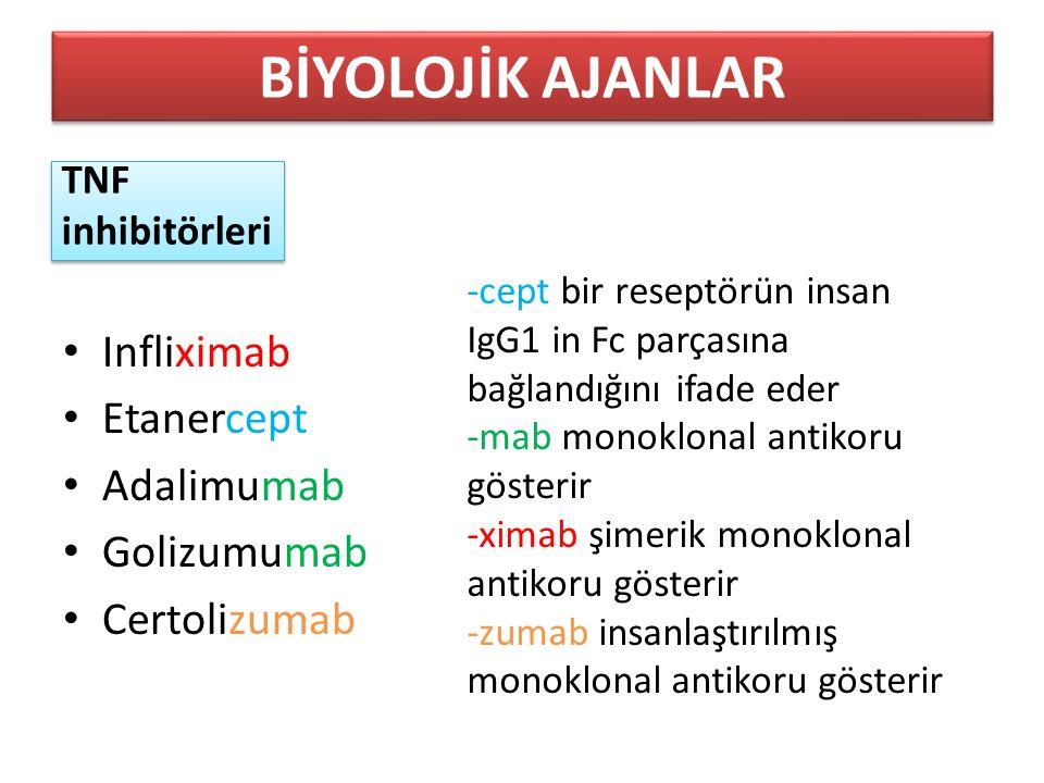 TNF inhibitörleri Infliximab Etanercept Adalimumab Golizumumab Certolizumab BİYOLOJİK AJANLAR -cept bir reseptörün insan IgG1 in Fc parçasına bağlandığını ifade eder -mab monoklonal antikoru gösterir -ximab şimerik monoklonal antikoru gösterir -zumab insanlaştırılmış monoklonal antikoru gösterir