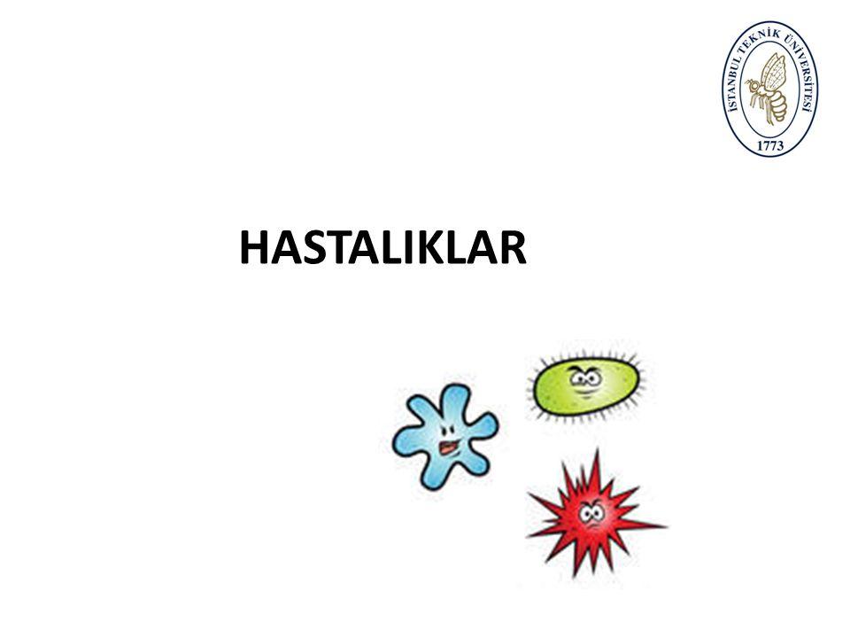 HASTALIKLAR