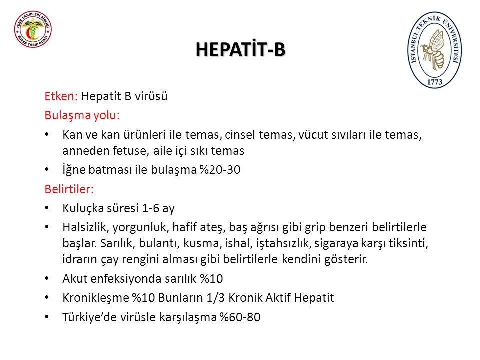 HEPATİT-B Etken: Hepatit B virüsü Bulaşma yolu: Kan ve kan ürünleri ile temas, cinsel temas, vücut sıvıları ile temas, anneden fetuse, aile içi sıkı temas İğne batması ile bulaşma %20-30 Belirtiler: Kuluçka süresi 1-6 ay Halsizlik, yorgunluk, hafif ateş, baş ağrısı gibi grip benzeri belirtilerle başlar.