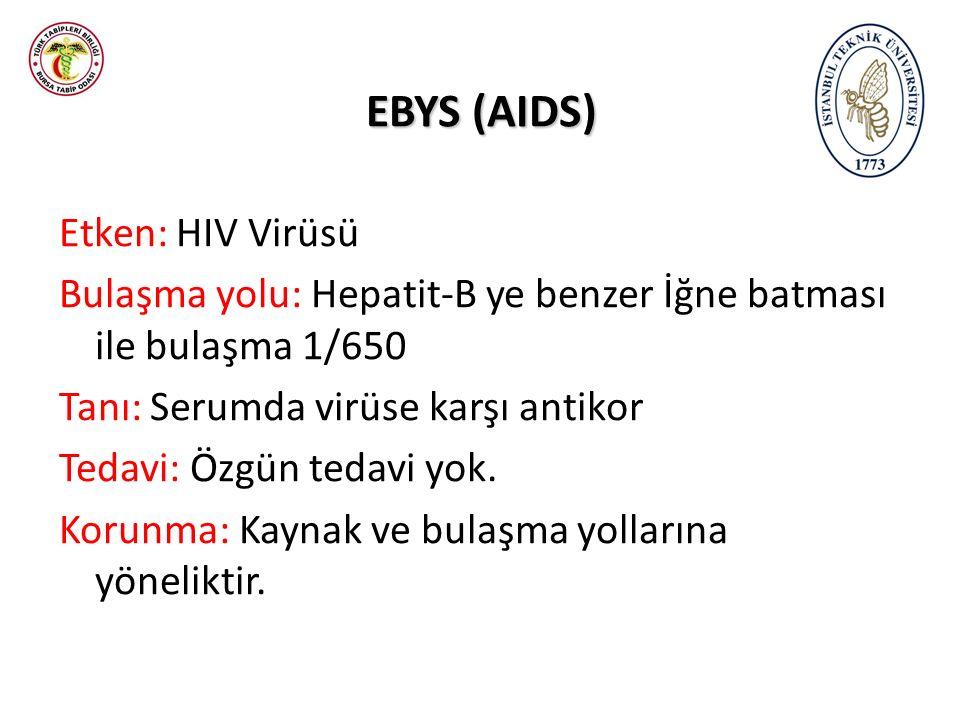 EBYS (AIDS) Etken: HIV Virüsü Bulaşma yolu: Hepatit-B ye benzer İğne batması ile bulaşma 1/650 Tanı: Serumda virüse karşı antikor Tedavi: Özgün tedavi