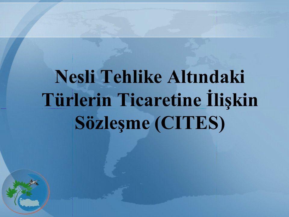 CITES EK-2 listesi, nesilleri mutlak olarak tükenme tehdidiyle karşı karşıya olmamakla birlikte, nesillerinin devamıyla bağdaşmayan kullanımları önlemek amacıyla ticaretleri belirli esaslara bağlanan türleri içerir.